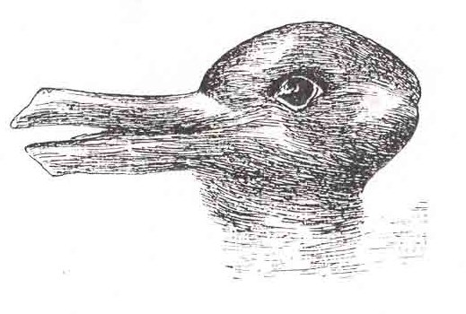 The duckrabbit